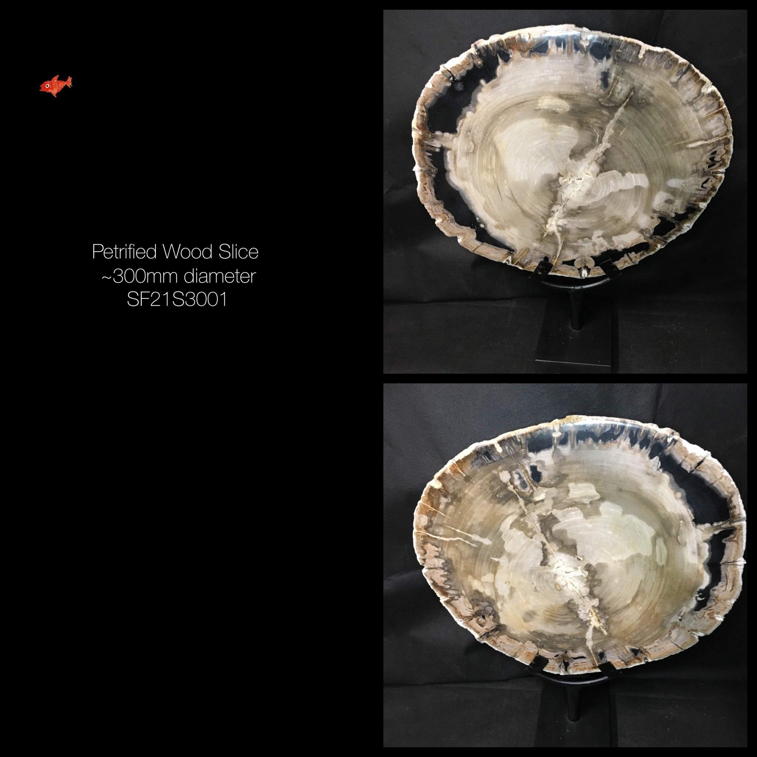 Petrified Wood Tableware