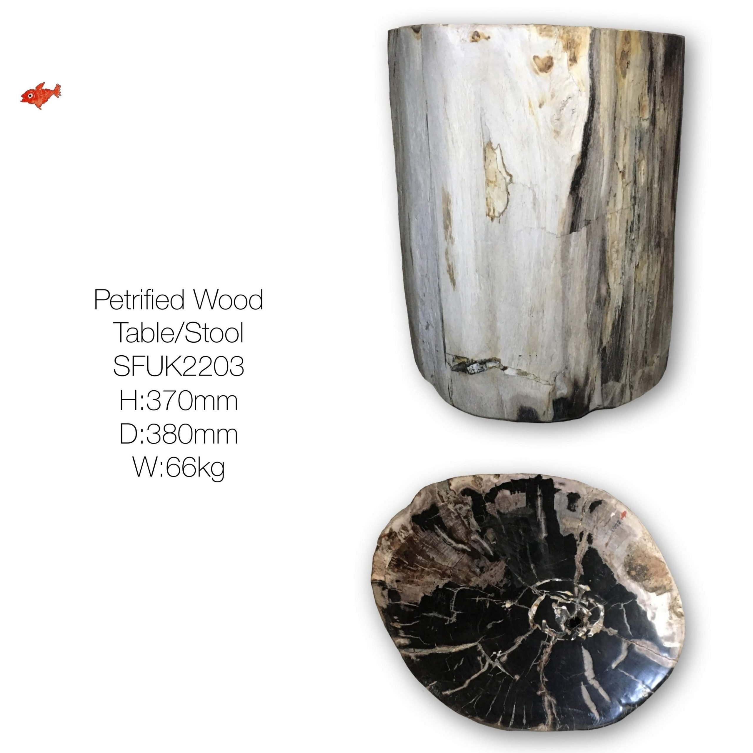 Fully Polished by hand, Petrified Wood Side Table or Stool