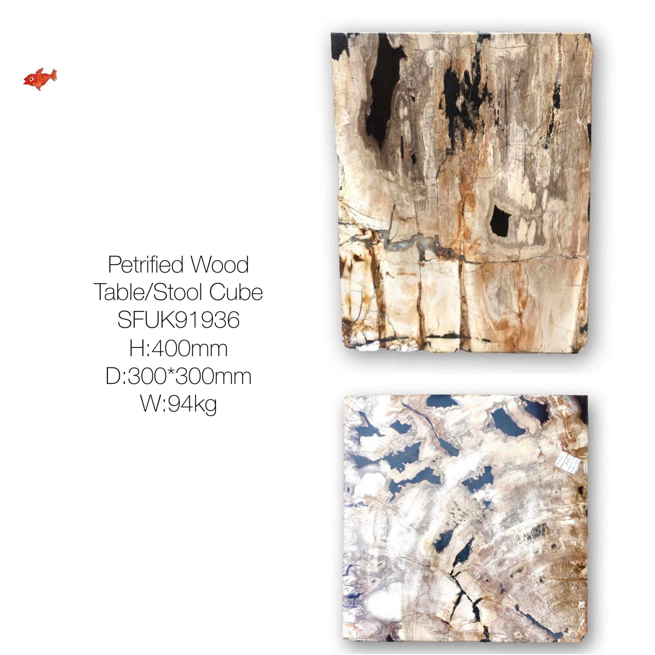 Petrified Wood Cube