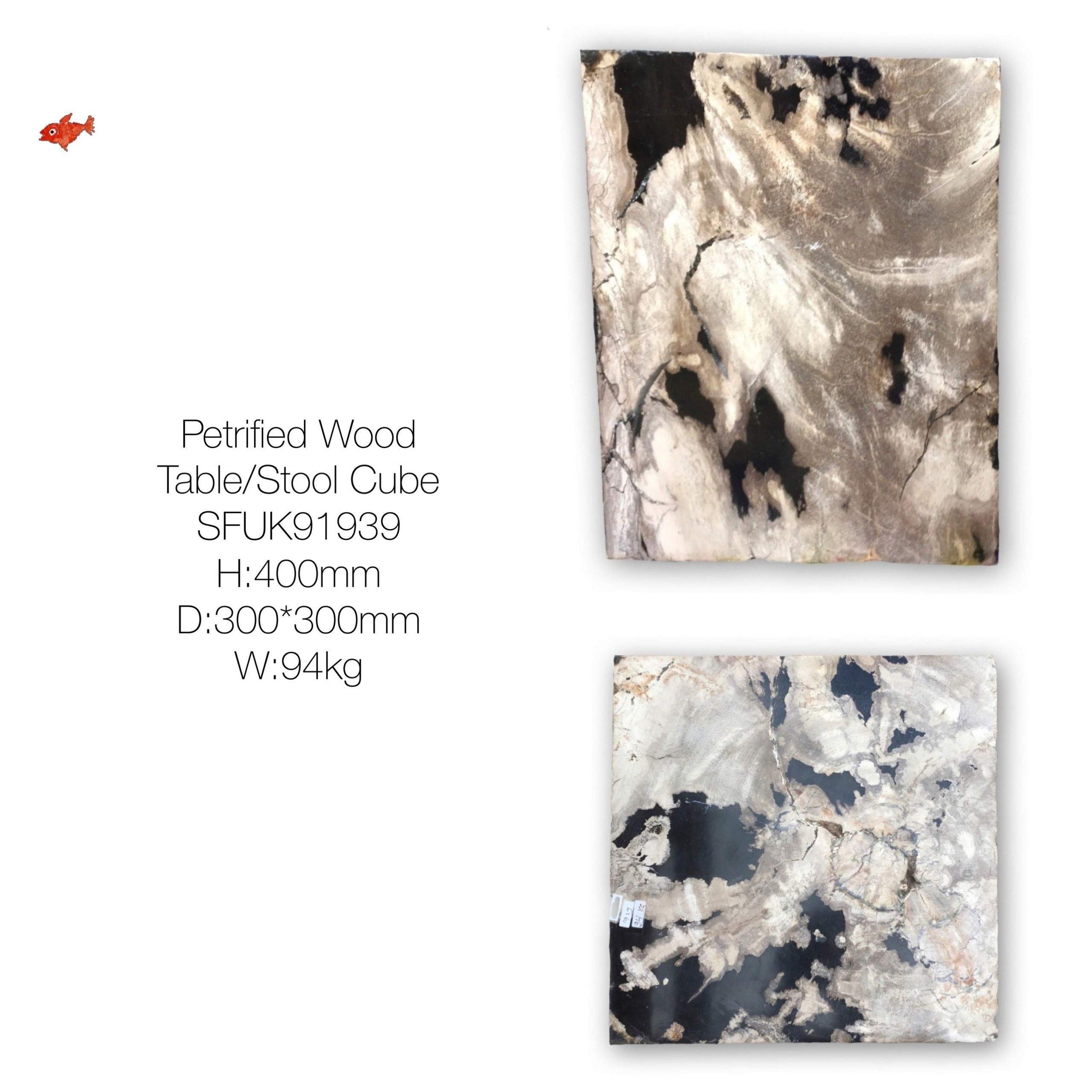 Balck and white Petrified Wood Cube