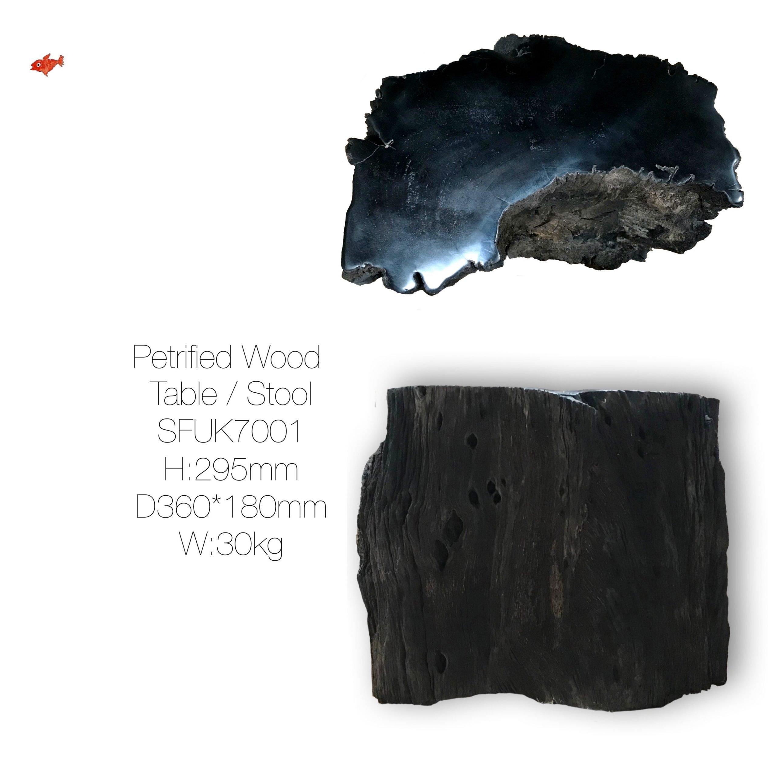 Black Petrified Wood Table Stool