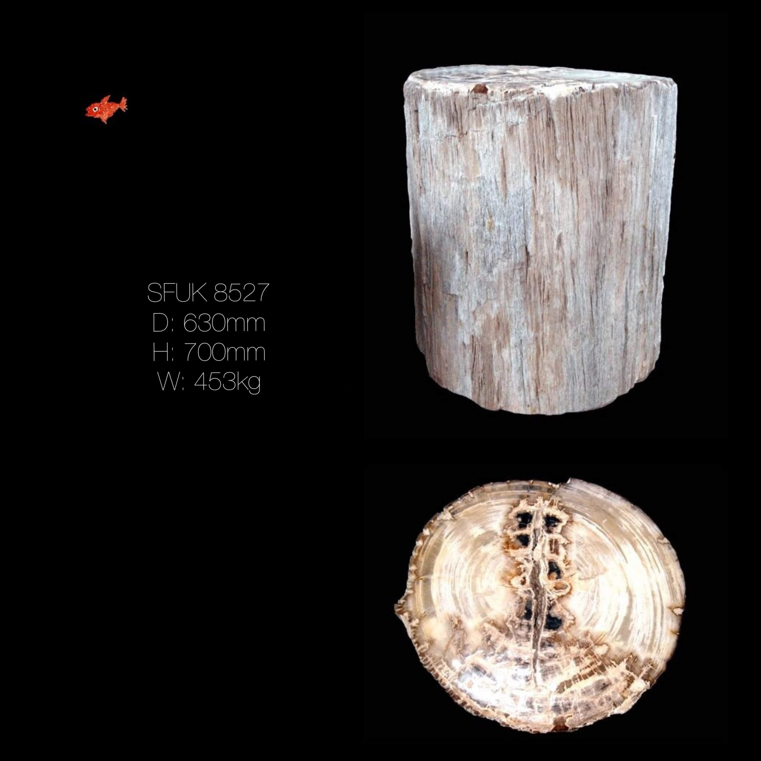Petrified Wood Table, Dining Table Base
