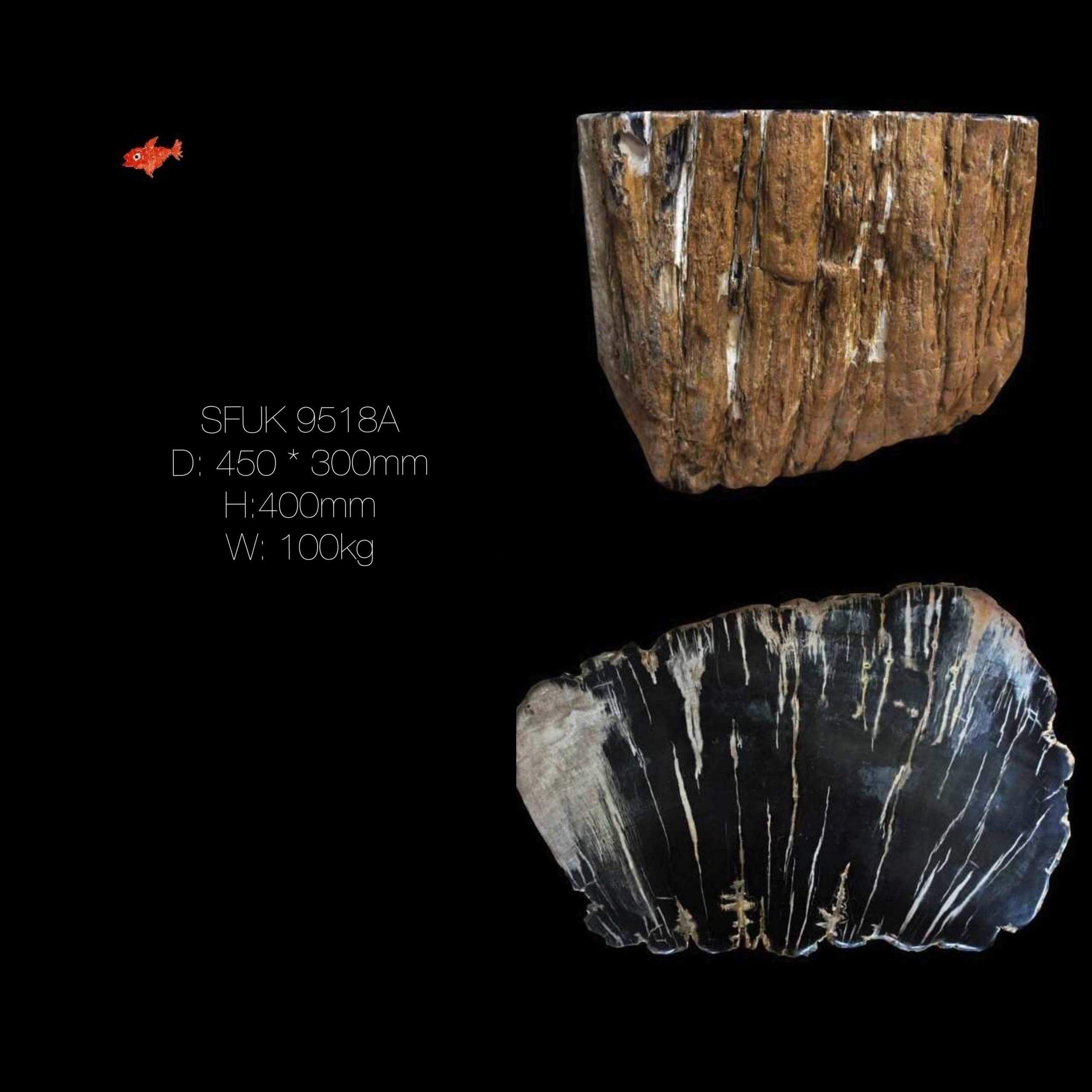 Petrified Wood Table